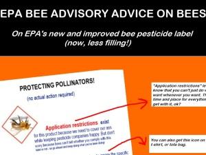 epa bee small
